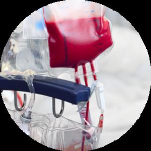 transfuzija1